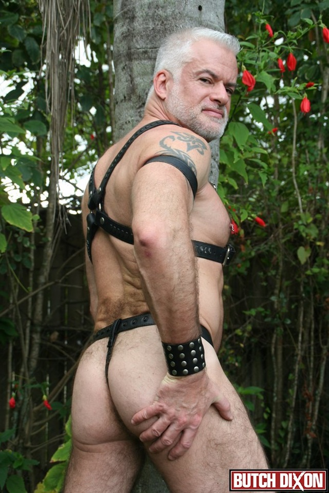 gallery older porn mature porn older gay hairy photo gallery tube male muscle men guys red daddy bears jake dixon butch cubs subs marshall