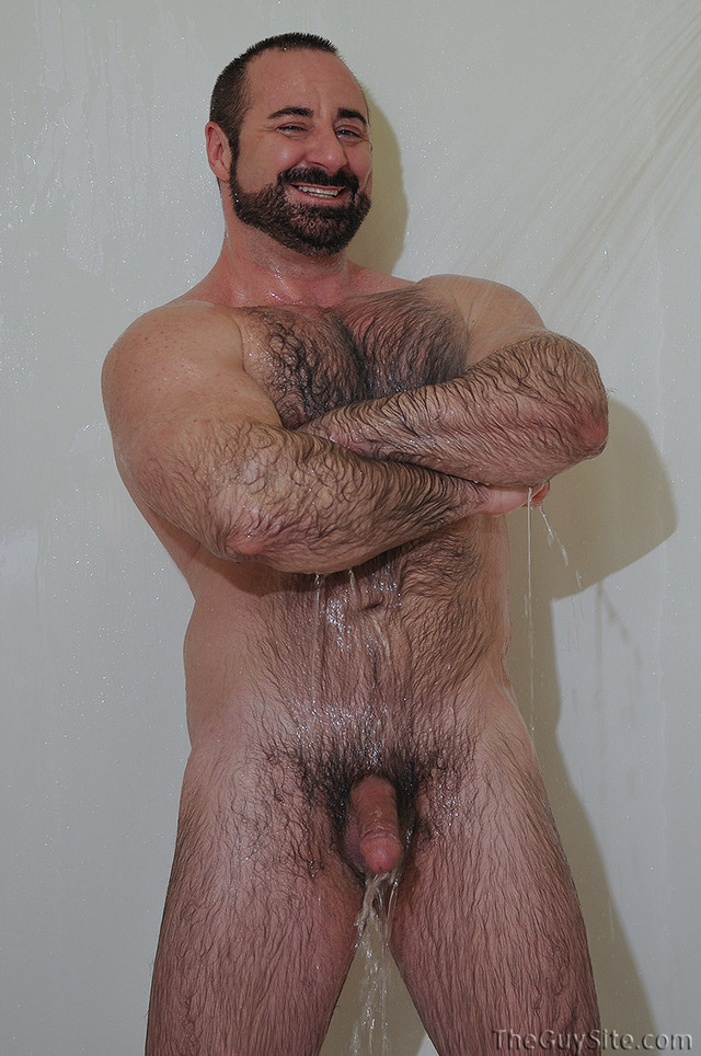 hairy mature free porn porn xxx gay guy hairy star bear muscle woof alert hirsute rocky labarre