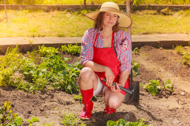 outdoor mature mature woman photo hat wearing red rubber outdoor boots backyard working stock garden tool gardening anetlanda