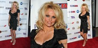 mature porn action mature porn seasoned action pamela anderson photo