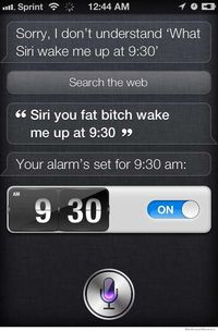 bitch fat in old porn siri fat bitch wake