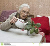 old lady in porn old lady watering flower european viola home