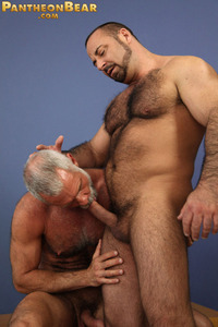 older male porn imagesa allensilver from allen silver hot older male hairy daddy grey hair fox gay porn