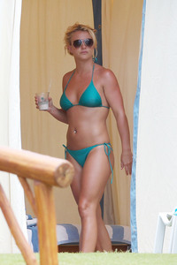 bikini moms photos famecrawler celeb moms bikinis pcn spears entry