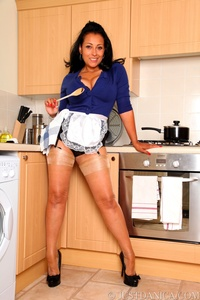 centerfold gallery porn star stocking danica collins cooking stockings suspenders