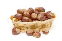 mature close up preview mature chestnuts wicker basket close white background