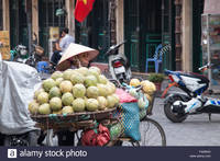mature vietnamese porn comp wad mature vietnamese lady woman selling melons fruit from bicycle forums bizarre orgey pics