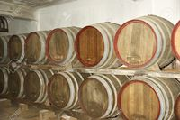matures pix vladj oak barrels which wine matures winery stock photo