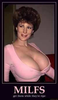 milf photo net demotivational poster milfs milf shirt boobs pokies