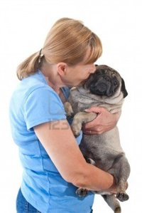 lady mature astrocady mature lady cuddling pug dog isolated white background photo