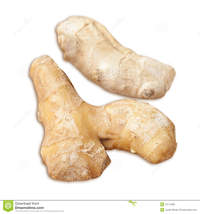 mature ginger mature root ginger cooking more similar stock