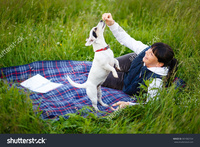 mature old stock photo mature woman years old playing dog jack russell terrier nature summer evening pic