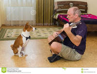 mature young young dog mature man composing music playing guitar royalty free stock