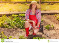 outdoor mature woman gardening tool working garden mature wearing hat red rubber boots backyard outdoor royalty free stock photos