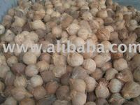 pure mature htb hjkpxxxxb xpxxq xxfxxx mature coconut showroom whole sale coconuts