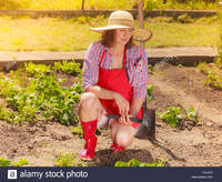 red mature comp mature woman wearing hat red rubber boots gardening tool working stock photo