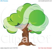 thick mature royalty free clipart illustration mature old tree thick green foliage portfolio milsiart